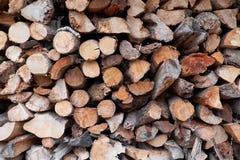 Trä loggar in den wood bunten Arkivfoto