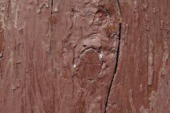 trä målas med målarfärg för mörk brunt, målarfärg är nytt Arkivfoton
