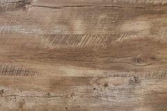 Trä mönstrar texturerar royaltyfri fotografi