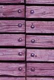 Trä med nitar Royaltyfri Foto