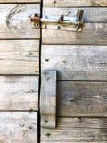 Trä naturtextur abstrakt bakgrundsgray Närbild Arkivfoton