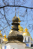 Trä- och guld- kyrkliga kupoler Arkivbild