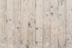 Trä och sandig strandpromenad Arkivfoton