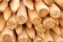 Trä på konstruktionsplats   royaltyfri foto