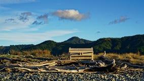 Trä parkera bänken på stranden i Nya Zeeland royaltyfri fotografi