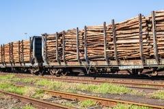 Trä som loggar det Poles drevet Fotografering för Bildbyråer