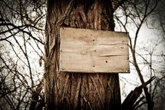 Trä stiga ombord Arkivbild