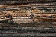 Trä strukturerar Royaltyfria Bilder