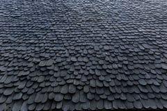 Trä taklägga Fotografering för Bildbyråer