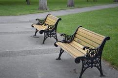 Trä tar av planet i parkera Royaltyfria Bilder