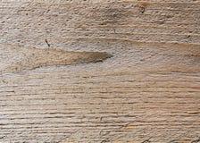 Trä texturera Royaltyfria Foton