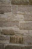 Trä texturera Royaltyfri Bild