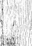 Trä texturera abstrakt vektor för bakgrundsgrungeillustration Bekymrad samkopiering Royaltyfri Foto