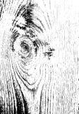 Trä texturera abstrakt vektor för bakgrundsgrungeillustration Bekymrad samkopiering Royaltyfri Bild