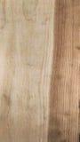 Trä texturera bakgrund royaltyfria foton