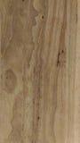 Trä texturera bakgrund Royaltyfria Bilder