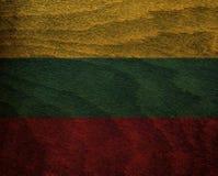 Trä texturerad flagga - Litauen Royaltyfri Foto