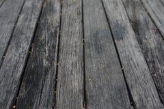 Trä texturerade bakgrunder Arkivfoto