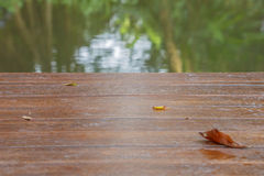 Trä texturerade bakgrunder Arkivbilder