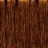 Trä texturerar Royaltyfria Foton