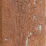 Trä texturerar Royaltyfria Bilder