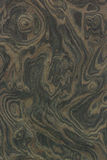 Trä texturerar bakgrund Royaltyfria Bilder