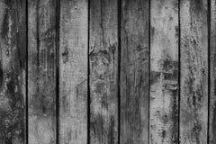 Trä texturerar Förser med rutor den skrapade gamla gränsen för svartvit bakgrund Fotografering för Bildbyråer