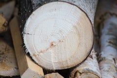 Trä texturerar gammala paneler för bakgrund arkivbild