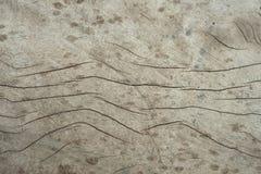 Trä ytbehandlar bakgrund arkivbild