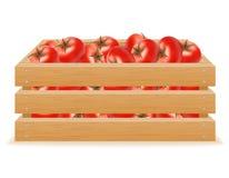 Träask av tomatvektorillustrationen Fotografering för Bildbyråer