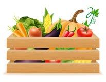 Träask med den nya och sunda grönsakvektorillustrationen Fotografering för Bildbyråer