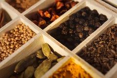 Träask mycket av kryddor Arkivfoto