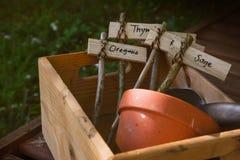 Träasken med lantliga kända lables för örtväxter som är idérika gör Arkivfoto