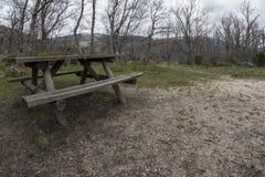 Träbänk för en picknick, i en ekskog arkivfoto