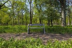 Träbänk för NPV-naturmitt längs banan arkivbilder