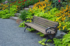 Träbänk i sommarträdgård Arkivfoton