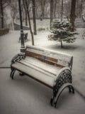 Träbänk med metallarmar som täckas med intakt snö fotografering för bildbyråer