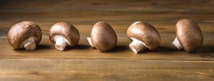 Träbakgrund för ny och härlig brun champinjonChampignon länge royaltyfria bilder