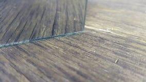 träbakgrund i reflexionen textur konst Arkivbild