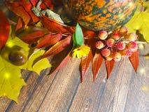 Träbakgrund lämnar äpplesammansättningshösten November Arkivfoton
