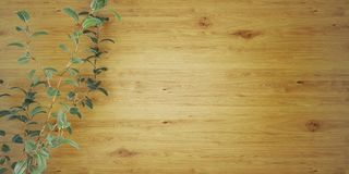 Träbakgrund med en illustration för växt 3D stock illustrationer
