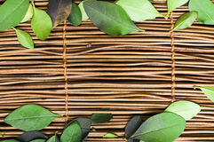Träbakgrund och leafs Royaltyfri Fotografi