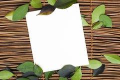 Träbakgrund och leafs Royaltyfria Bilder