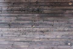 Träbakgrundstexturen Royaltyfria Foton