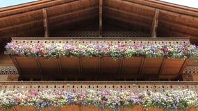 Träbalkong med att blomma färgrika petunior Royaltyfri Fotografi
