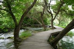 Träbana över floden och till och med träden i den Krka nationalparken, Kroatien Fotografering för Bildbyråer