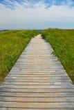 Träbana som leder till havet Arkivbild