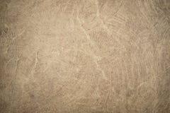 Träbilder för golvbakgrundsmateriel Arkivbilder