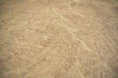 Träbilder för golvbakgrundsmateriel Royaltyfri Fotografi