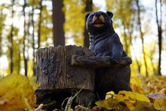 Träbjörn med matningsho för ekorrar och fågelcloseup royaltyfri fotografi